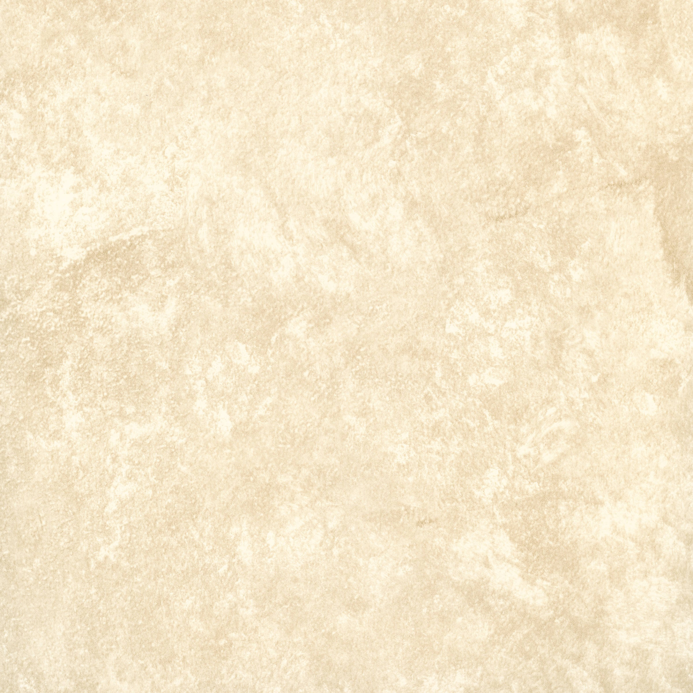 Ct  E   Eades Discount Wallpaper Discount Fabric