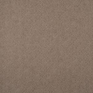 HT2020 ― Eades Discount Wallpaper & Discount Fabric