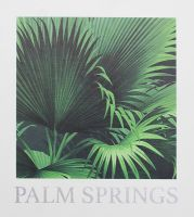 Palm Springs by Kenneth James