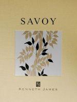 Kenneth James Savoy