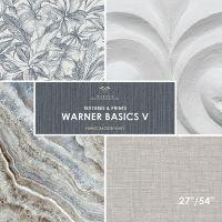 Warner Basics V