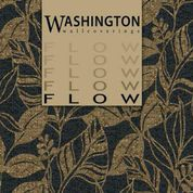 Flow by Washington