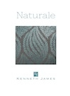 Kenneth James Naturale